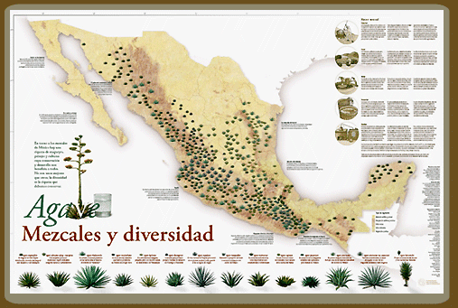 Agaves de Mexico map