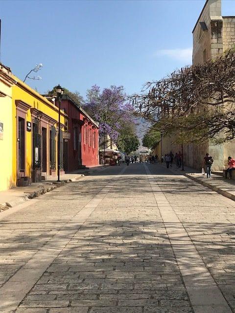 Mezcalification in Oaxaca