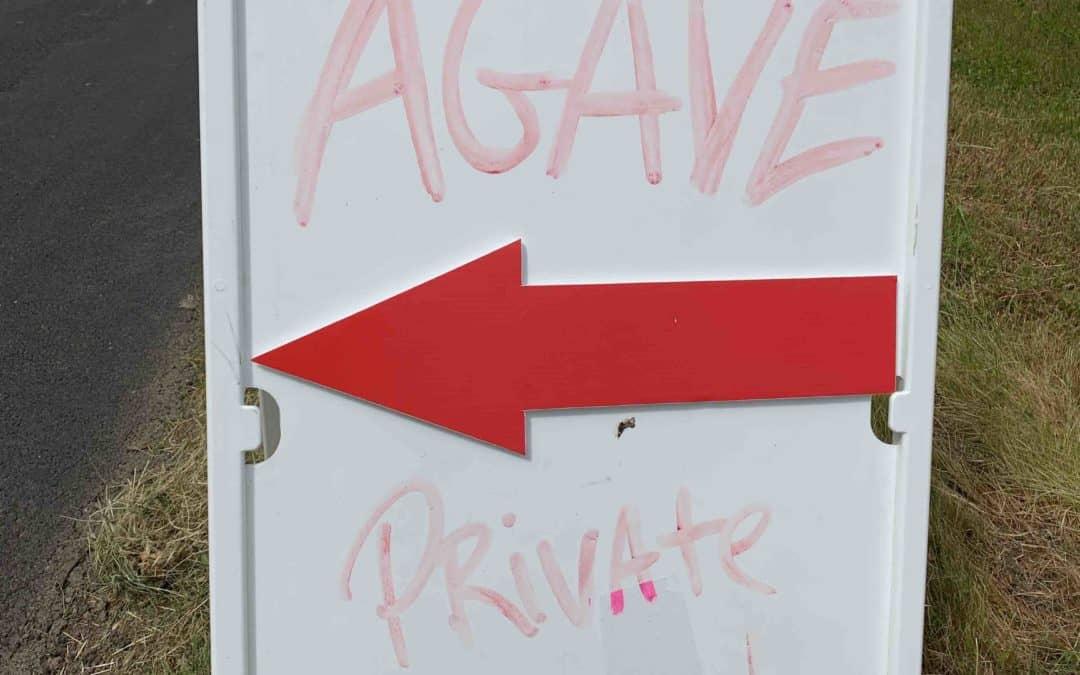 Agave spirits come to California