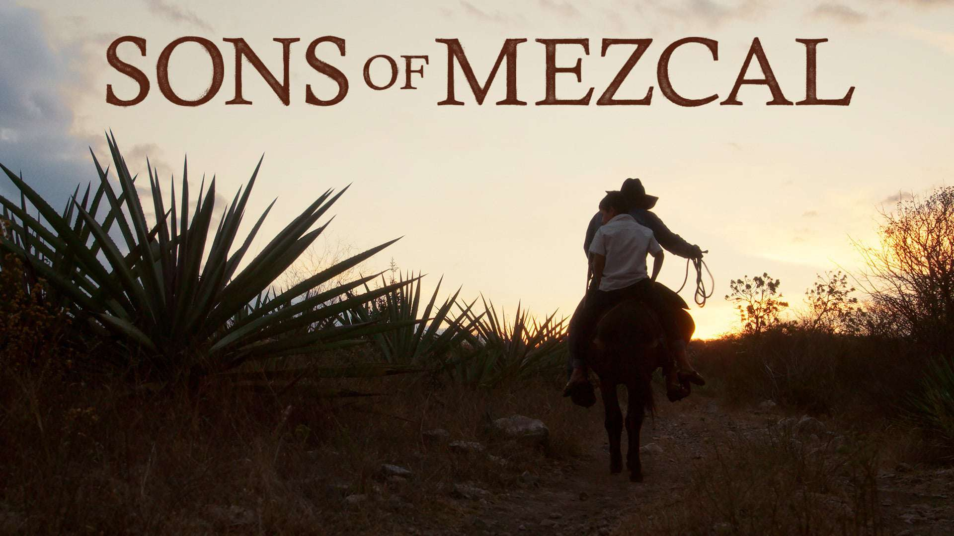 Sons of Mezcal